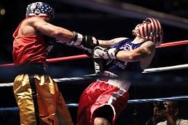 boxers-919232__180